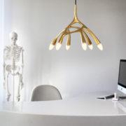 NXTNL1-3 – NLC_Gold_Desk